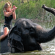 Chiang Mai Elefantencamp Ganztages-Tour Privat