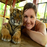 Chiang Mai Halbtages Tour Tiger Kingdom Privat